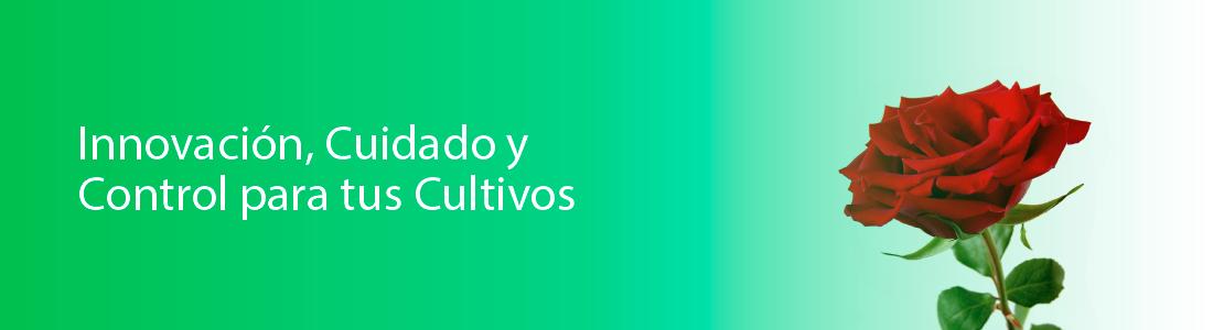 agritop-ecuador3